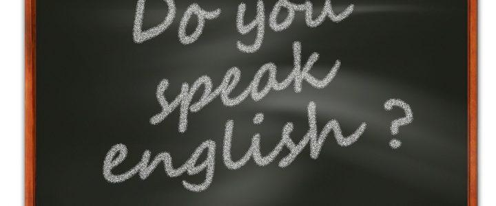 Regulamin uczestnictwa w projekcie MChE – język angielski